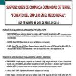 """SUBVENCIONES DE COMARCA COMUNIDAD DE TERUEL """"FOMENTO DEL EMPLEO EN EL MEDIO RURAL"""""""