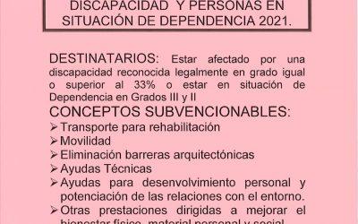 AYUDAS INDIVIDUALES PARA PERSONAS CON GRADO DE DISCAPACIDAD Y PERSONAS EN SITUACION DE DEPENDENCIA 2021